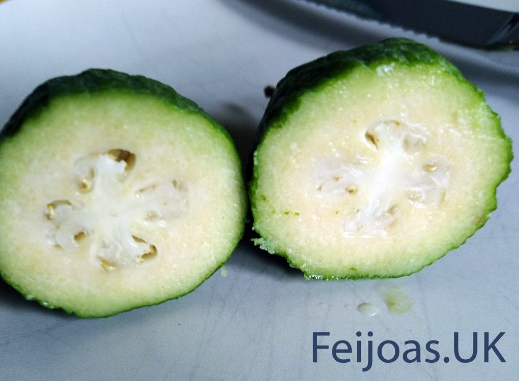 UK grown Feijoa Fruit from 2019 cut in half.
