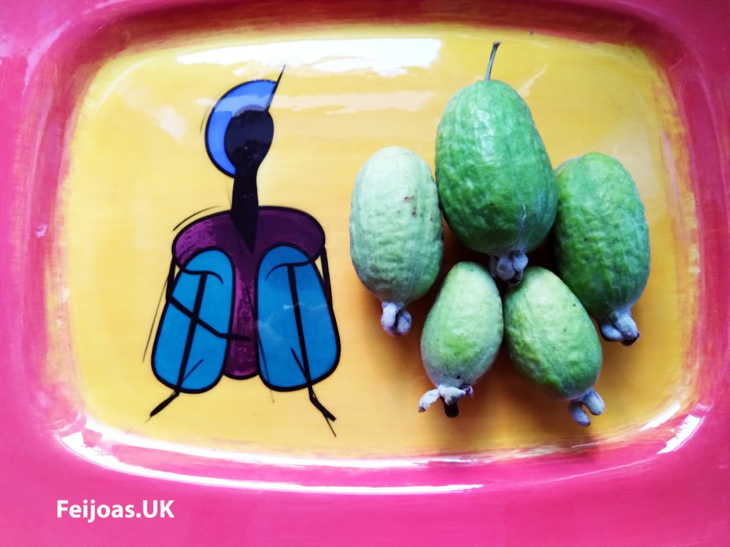 Photo of January 2020 Feijoas on a decorative plate.